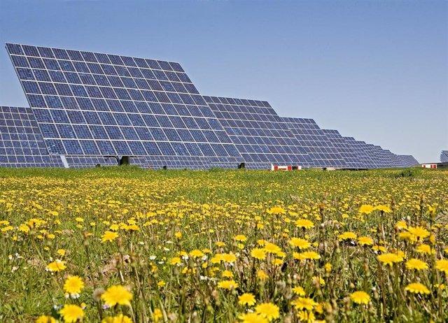 Planta fotovoltaica en Estados Unidos