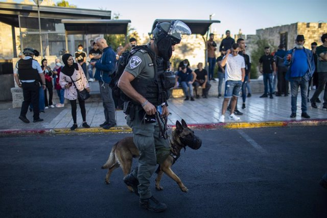 17 June 2021, Israel, Jerusalem: A member of the Israeli security forces leads his police dog during clashes with Palestinians near the Damascus Gate of the Old City of Jerusalem. Photo: Ilia Yefimovich/dpa