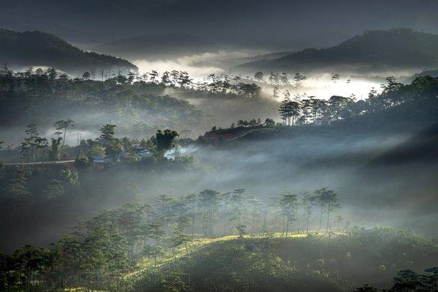 El vapor de agua es un componente importante del ciclo del agua de la Tierra.