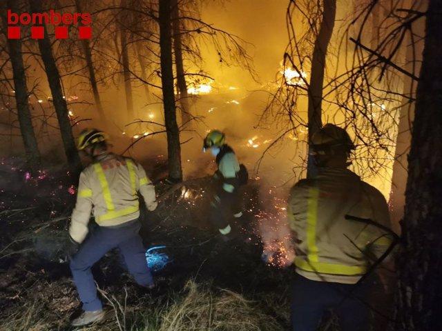 Els Bombers de la Generalitat treballen per apagar l'incendi que ha començat a Alfarràs (Lleida).