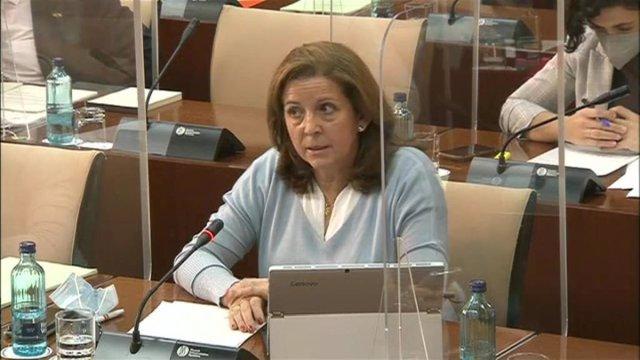 Archivo - La parlamentaria de Vox, María José Piñero, en una imagen de archivo en la Comisión de Salud del Parlamento de Andalucía.