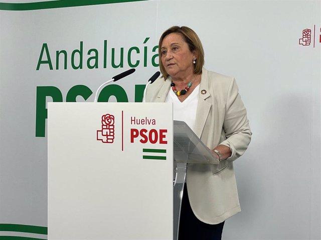 La coordinadora de la Comisión Gestora del PSOE de Huelva y diputada nacional, María Luisa Faneca.