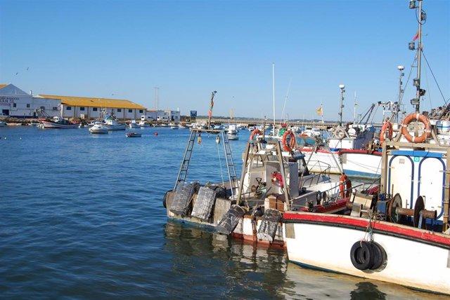 Archivo - Puerto pesquero de Isla Cristina (Huelva)