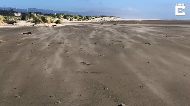 El fuerte viento soplando sobre en una playa de Oregón crea ondas serpenteantes en la arena