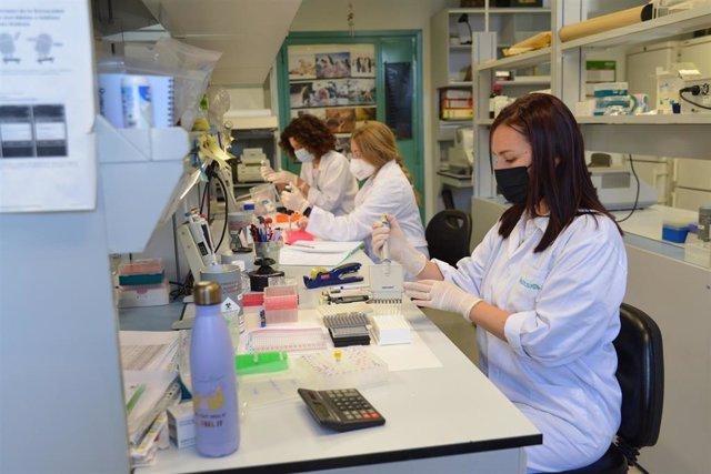 Varias de las investigadoras que trabajan en el programa de investigación para la prevención del cáncer hereditario en el Instituto de Biología y Genética Molecular (IBGM) de la Universidad de Valladolid (UVA).