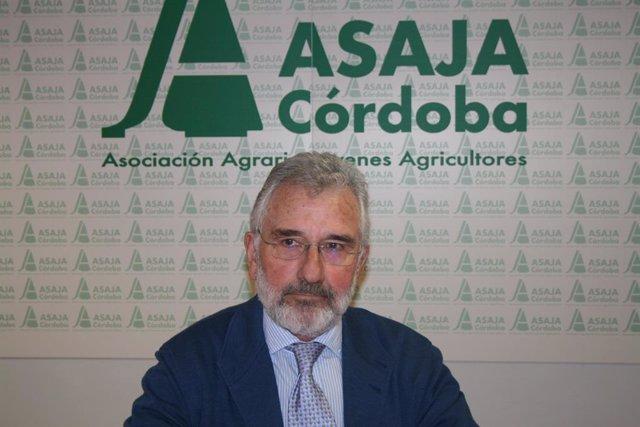 Archivo - El presidente de Asaja Córdoba, Ignacio Fernández de Mesa, en una imagen de archivo.