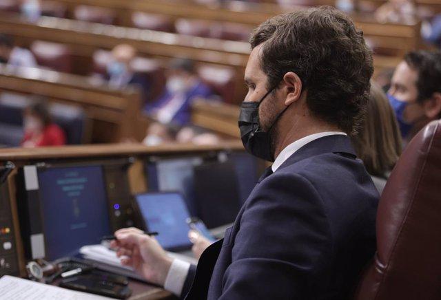 El líder del PP, Pablo Casado, assegut al Congrés dels Diputats
