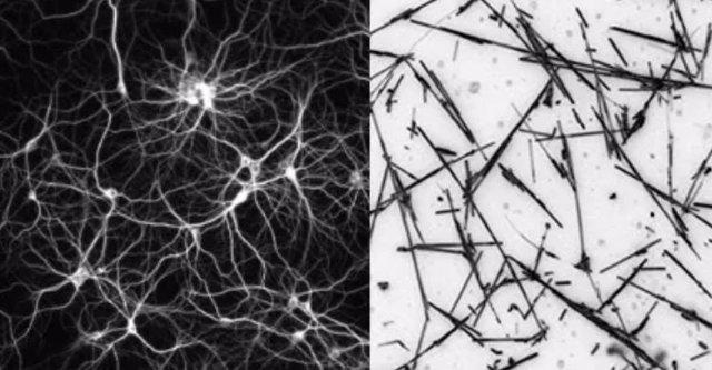 Imagen conceptual de una red neuronal (izquierda) junto a una imagen de micrografía óptica de una red de nanocables.