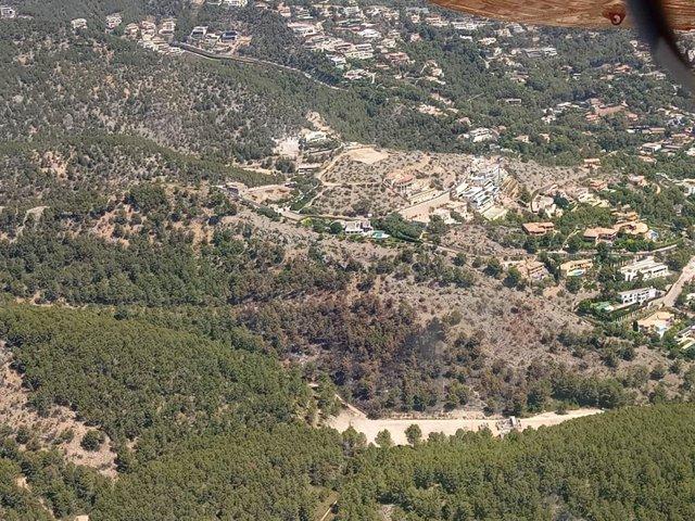 Zona calcinada en el Coll de Sa Creu.