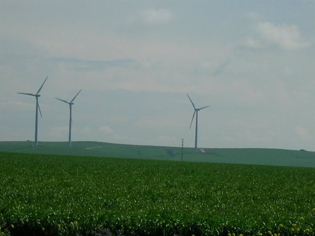 Archivo - Energía eólica, renovables.