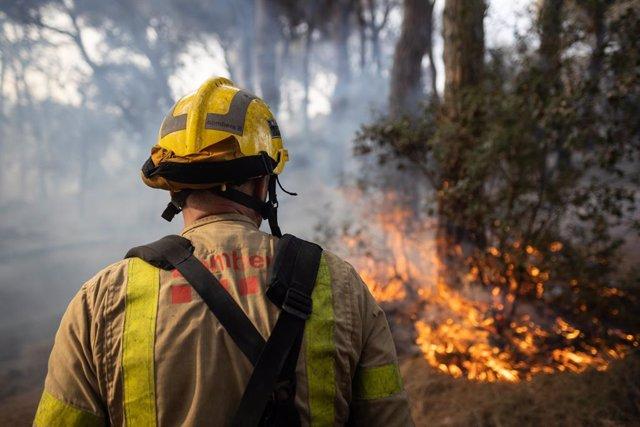 Un bombero en el incendio en Argentona, a 24 de junio de 2021, Barcelona, Catalunya (España). Un total de 28 dotaciones terrestres y ocho áreas de Bombers de la Generalitat están trabajando en un área de seis hectáreas afectadas por un incendio ocasionado