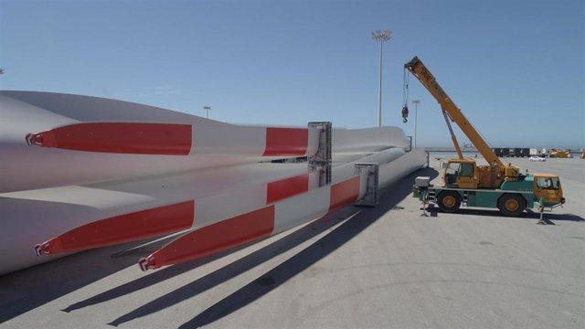 Aspas preparadas para el embarque en el puerto de Motril (Granada)
