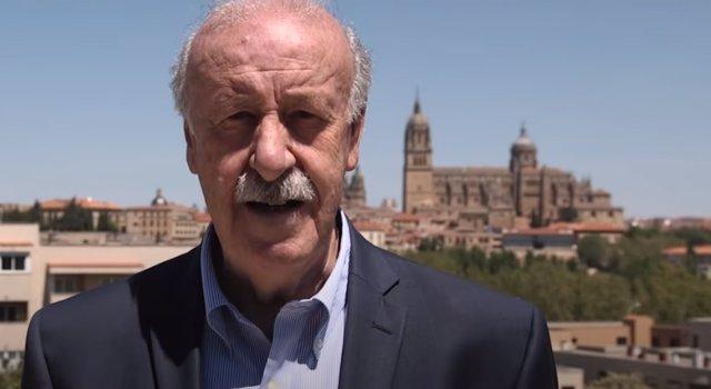 El exentrenador de la Selección Española masculina de fútbol, Vicente del Bosque.