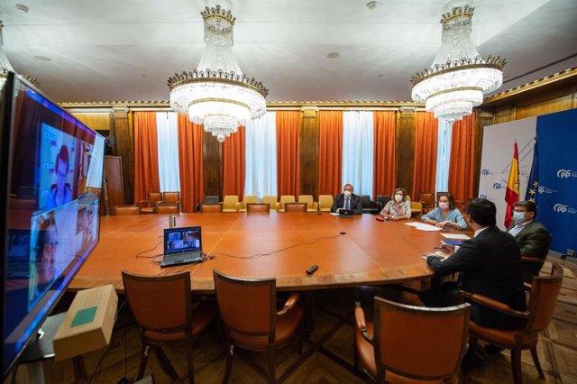Reunión telemática de la portavoz del PP, Cuca Gamarra, con representantes de las organizaciones agrarias Asaja, COAG y UPA