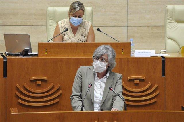 La consejera de Movilidad, Transporte y Vivienda, Leire Iglesias, en el Pleno de la Asamblea.