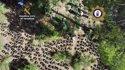 Imagen aérea de la plantación intervenida