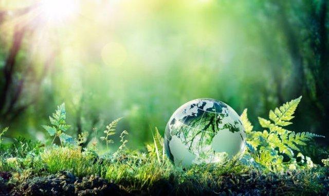 Archivo - La Organización Mundial del Turismo premia a ClimateTrade