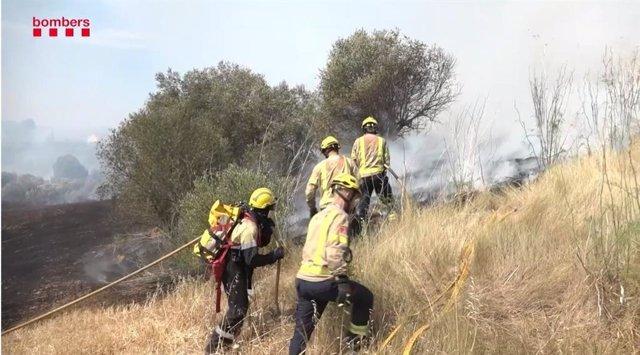 Dotacions dels Bombers treballen en l'incendi de Sant Esteve Sesrovires