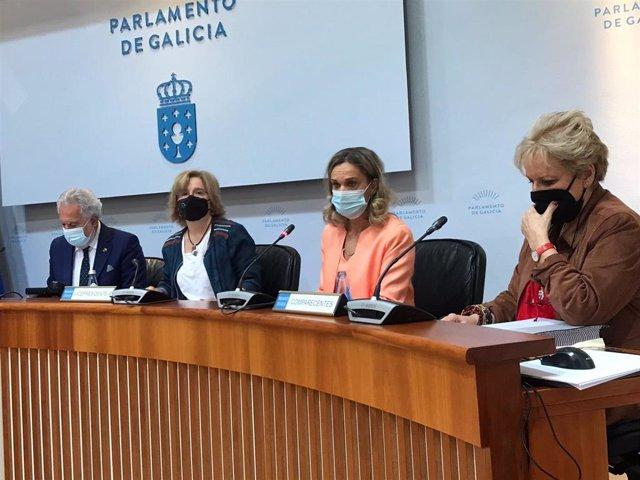 La Valedora do Pobo, Dolores Fernández Galiño, en su comparecencia en la Comisión de Peticións para presentar el informe de actividad del año 2020