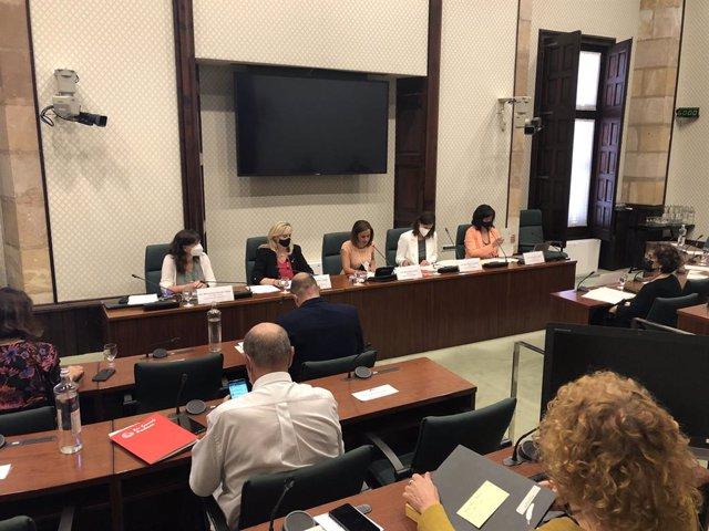 La consellera de Drets Socials de la Generalitat, Violant Cervera, en la comissió del Parlament