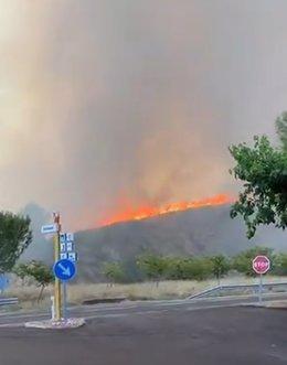 Incendio forestal en Jalance (Valencia)