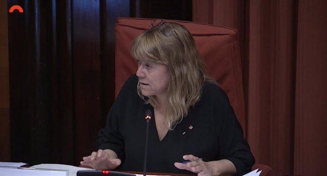 La consellera Natàlia Garriga en la compareixença al Parlament