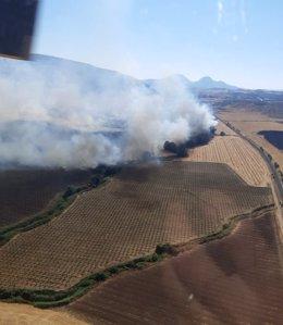 Incendio en Teba (Málaga)