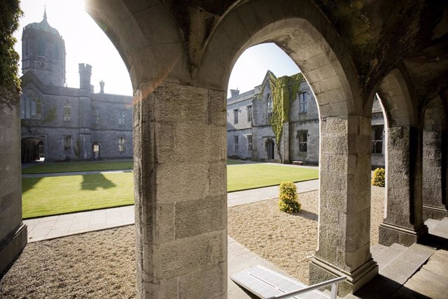 National University of Ireland Galway to conduct clinical trial with SINOMED on the HT Supreme Healing-Targeted Drug-Eluting Stent.