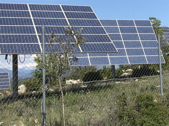 Archivo - Placas solares, fotovoltaica, energía limpia