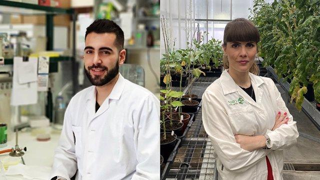 Fertiberia premia los trabajos doctorales sobre temas agrícolas.