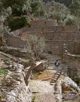 Archivo - Imagen del barranco de Biniariax, Serra, Montaña, Tramuntana, Excursión, Mallorca, Archivo, Recurso, Paisaje natural, excursionismoiiii