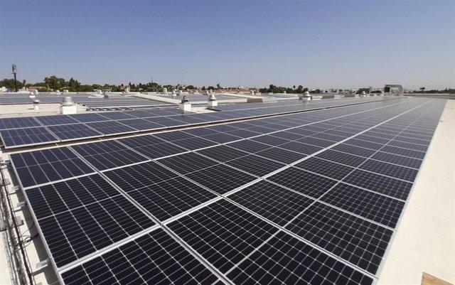 Paneles fotovoltaicos instalados por Iberdrola en una industria.