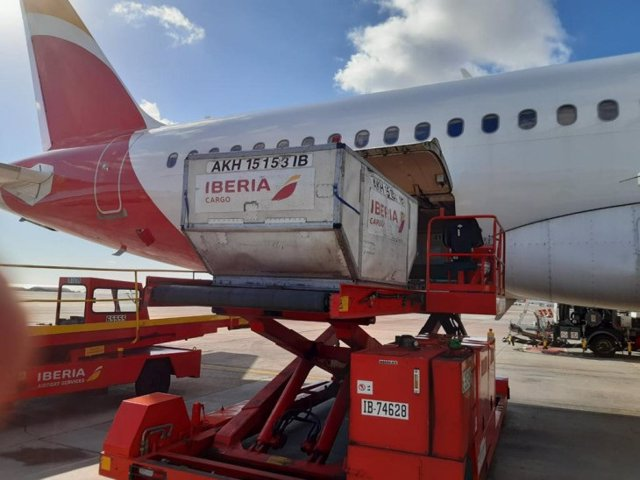 Archivo - El Grupo Iberia e IAG Cargo llevan a Canarias y Melilla las vacunas de Moderna