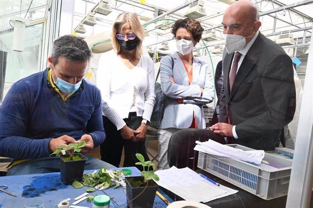 Carnero visita una de las investigaciones del Itacyl con motivo de la presentación del Plan Estratégico 2021-2027