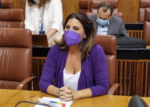 La portavoz del Grupo Socialista en el Parlamento andaluz, Ángeles Férriz.