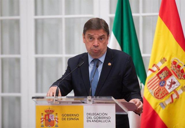 El ministro de Agricultura, Pesca y Alimentación, Luis Planas, en una imagen de archivo