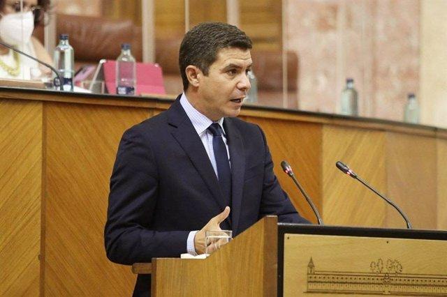 El portavoz de Cs en el Parlamento de Andalucía, Sergio Romero, este miércoles en la tribuna de oradores.