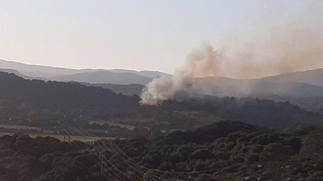 Incendio forestal en Los Barrios (Cádiz)