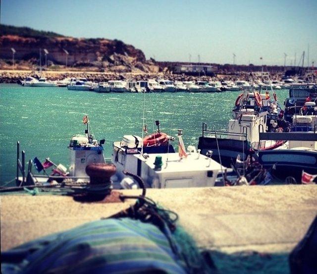 Archivo - Puerto pesquero de Conil (Foto de archivo).