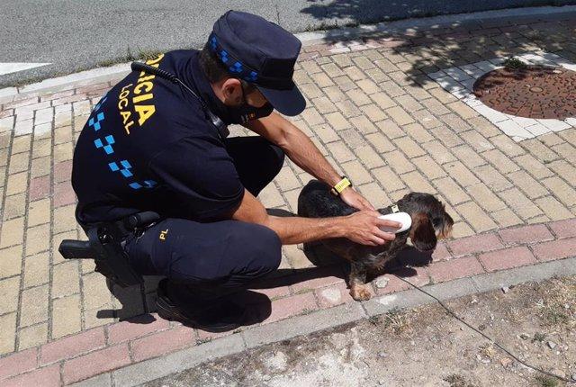 La Policía Local inicia la campaña de especial de información destinada a propietarios de perros