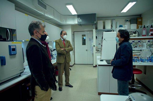 Investigadores de Perú diseñan un test que diagnostica la COVID-19 en la saliva con financiación española.