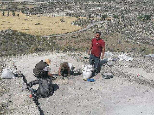 Archivo - Trabajos arqueológicos