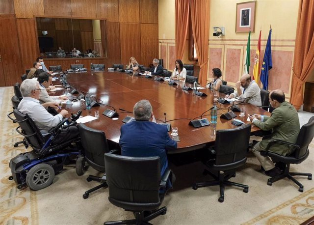 La presidenta del Parlamento, Marta Bosquet, reunida con la Mesa del Tercer Sector en junio de 2020 para explicar la línea de ayudas A proyectos de ámbito andaluz, que se estrenó en el pasado ejercicio.