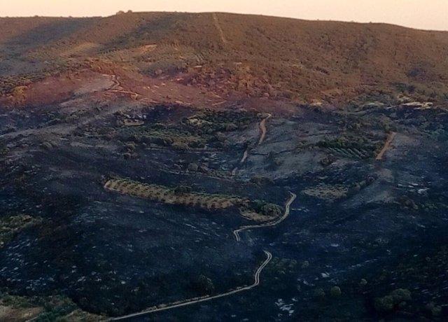 Incendio en Peraleda de San Román