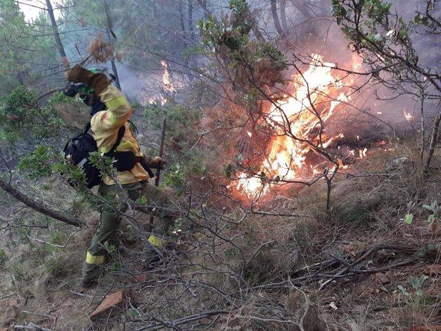 Un efectivo del Infoca trabaja en la extinción del incendio en un paraje de Jubrique (Málaga)