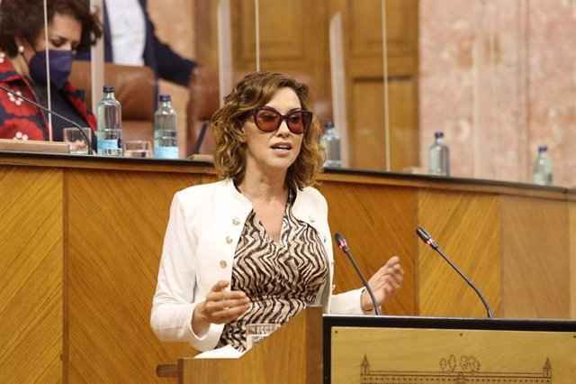 Archivo - La parlamentaria de Ciudadanos, Mercedes Cebrián, en una imagen en el Pleno del Parlamento.