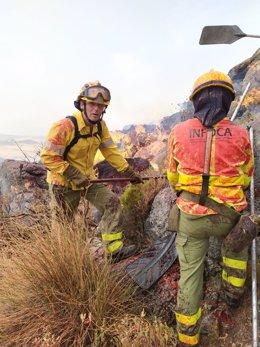 Unos efectivos del Plan Infoca en las labores de lucha contra el incendio declarado en el municipio de Cañete La Real (Málaga)