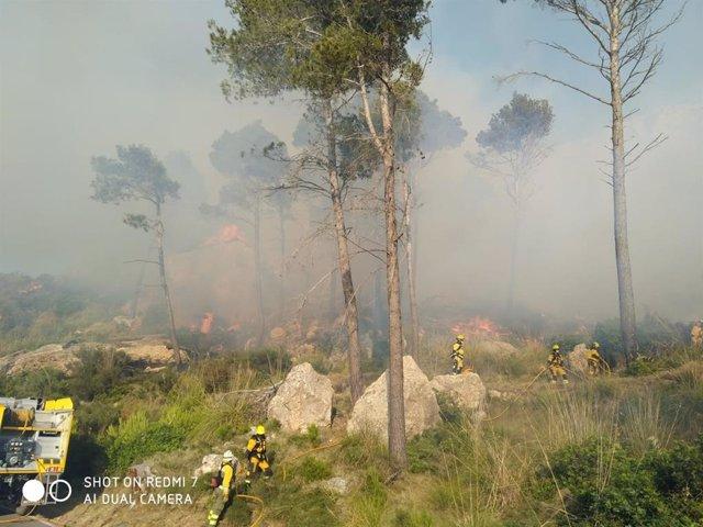 Efectivos trabajan en labores de extinción del fuego declarado en el Coll de sa Gramola (Andratx)