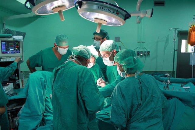 El Hospital General de Elche realiza más de 220 trasplantes renales desde su acreditación en 2012