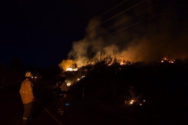 Incendio forestal declarado en Jun (Granada)